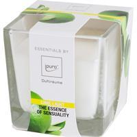 Essentials by Ipuro Duftkerze Lime Light 170g (1er Pack)