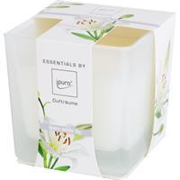 Essentials by Ipuro Duftkerze White Lily 170g (1er Pack)