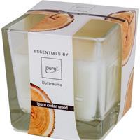 Essentials by Ipuro Duftkerze Cedar Wood 170g (1er Pack)