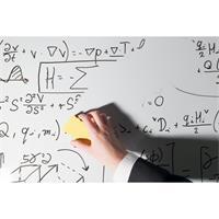 Wark24 Whiteboard-Reiniger 250ml