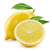 Teisseire Sirup Zitrone, Teisseire Sirup Lemon