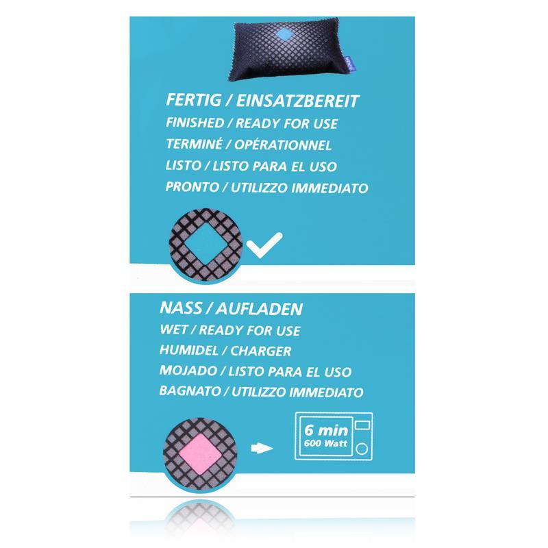 Wenko Auto-Entfeuchter 2x120g - Luftentfeuchter 50292100